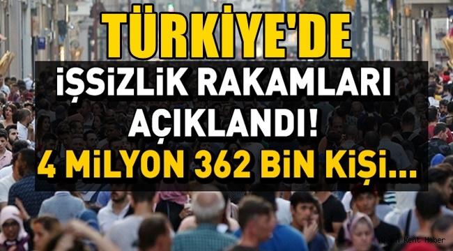 2020 Yılı Türkiye İşsizlik Rakamları