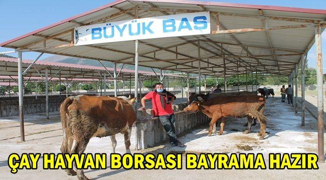 Çay Hayvan Borsası Bayrama Hazır !!