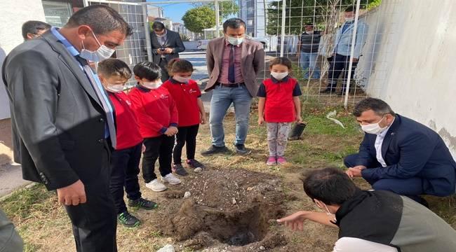 Başkan Serkan Koyuncu öğrencilerle beraber fidan dikti