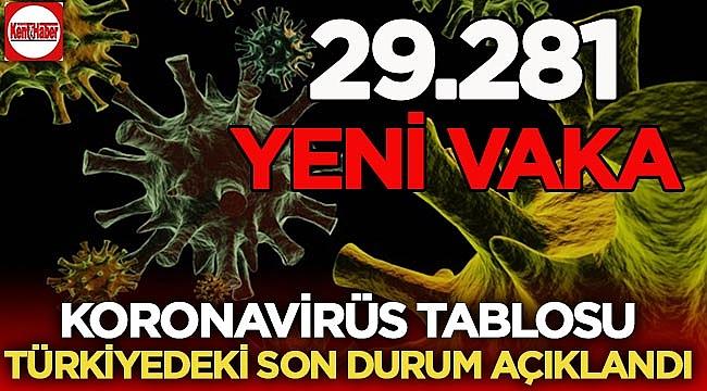 29 kasım Koronavirüs tablosu