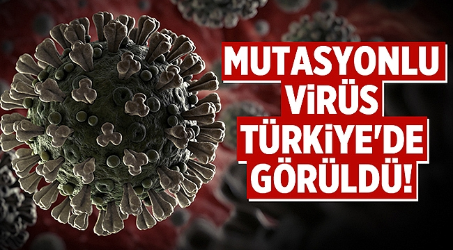 Bakan Koca: Mutasyonlu virüs Türkiye'de görüldü