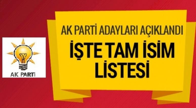 Başkan Recep Tayyip Erdoğan 20 ili daha açıkladı
