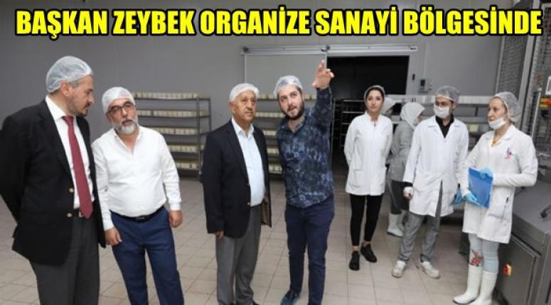 Mehmet Zeybek, Organize Sanayi Bölgesini ziyaret etti !!