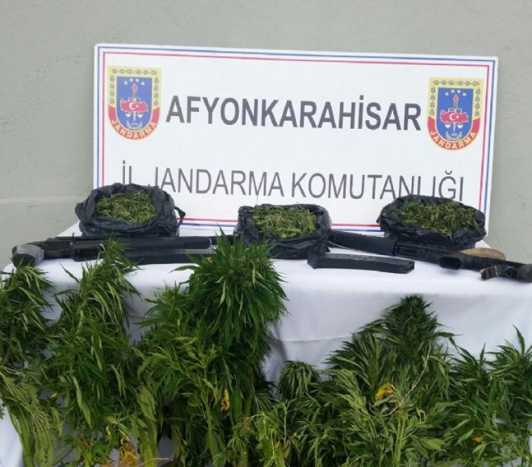 JANDARMA'DAN BOZÜYÜK'DE UYUŞTURUCU OPERASYONU