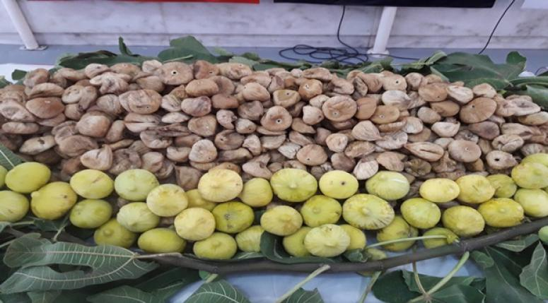 Çinliler, Türk kuru meyvelerine hayran kaldı