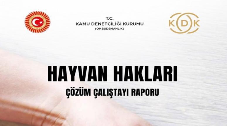 KDK Hayvan Hakları Çalıştay Raporunu Yayınladı