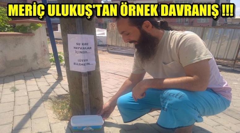 MERİÇ ULUKUŞ'TAN ÖRNEK DAVRANIŞ !!!