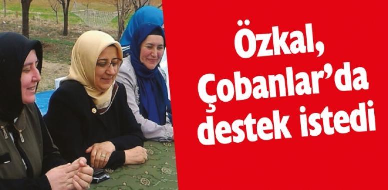 Milletvekili Özkal, Çobanlar'da destek istedi