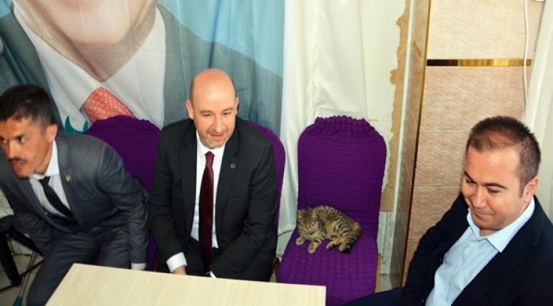 AK Parti İl Başkanı Sezen'in hayvan sevgisi takdir topladı